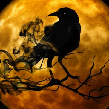 E8 Scary, Scary…Exam! Halloween & Grammar